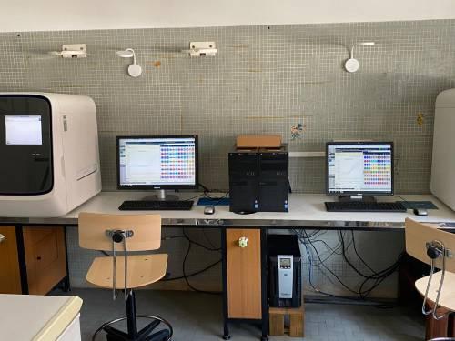 Qui vengono validati i tamponi: viaggio nel laboratorio del policlinico di Palermo 4