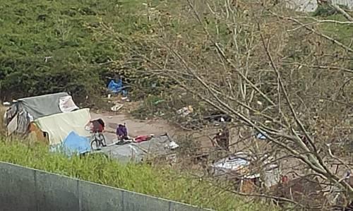 Discariche, roghi tossici e pic-nic: sul Lungotevere di Pietra Papa spunta una nuova favela 9