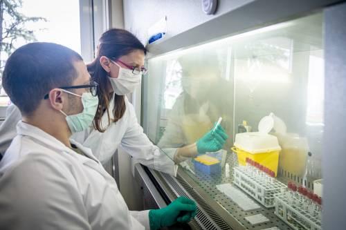 Lombardia, ecco chi ha gli anticorpi: 1 su 10 è asintomatico