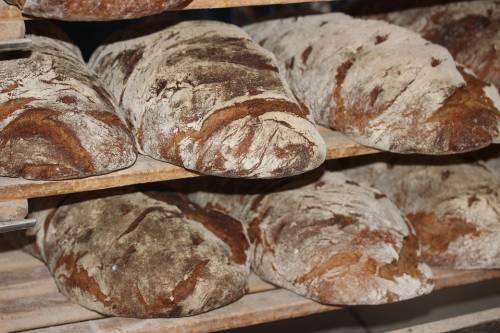 Meglio carta o plastica? Tutti i segreti del pane che ancora non sapete