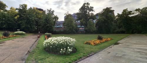 Regno Unito, 3 morti e 3 feriti gravi in un parco a Reading