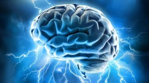 Scoperta la molecola che può bloccare l'invecchiamento del cervello