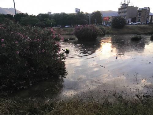 Nubifragio, Palermo in tilt: e nei sottopassi muoiono annegate 4 persone 11