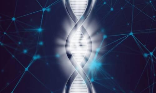 Astaxantina, la molecola che contrasta l'invecchiamento