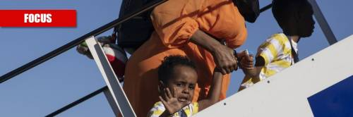 """""""Lo ius soli complica soltanto"""": la verità sulla legge pro migranti"""