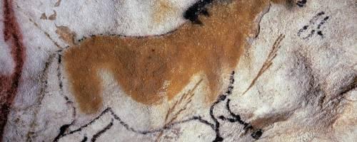 """Il più antico cane italiano si """"nascondeva"""" in Puglia"""