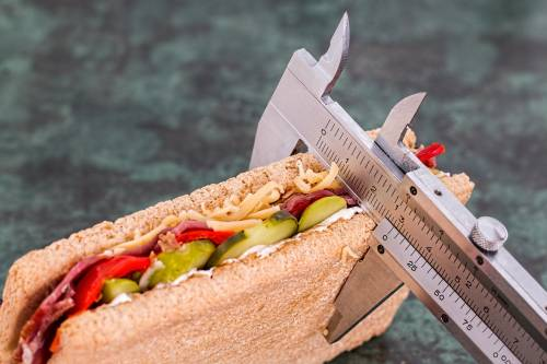 Io sovrappeso ora ingrasso. Così nessuno mi insulterà