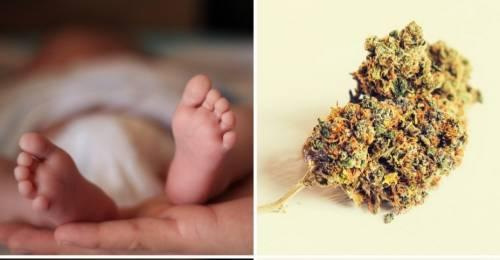 """Quei bimbi positivi alla droga: """"Così i casi sono raddoppiati"""""""