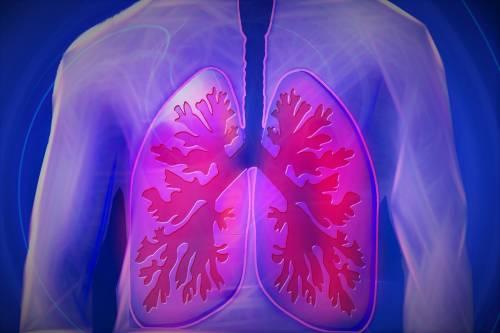 Analizzati i polmoni dei morti Covid: ecco come uccide il virus