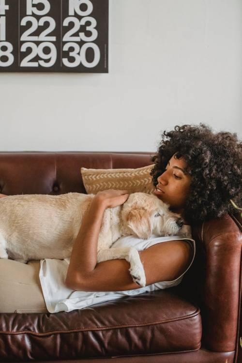 Così si impara a convivere con i cani ciechi o sordi