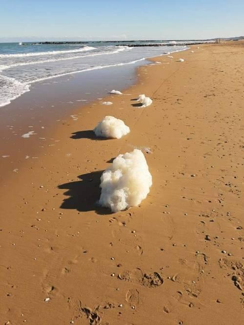 """Strana schiuma in mare """"Ecco che cosa c'è dietro"""""""
