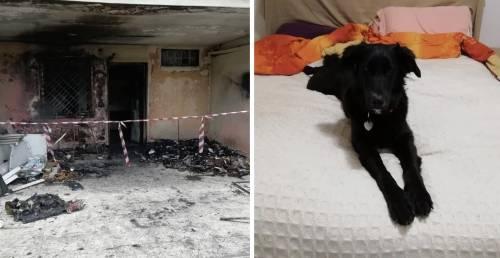 """Tragedia a Capodanno, villino inghiottito dalle fiamme: """"È stato un petardo"""""""