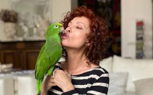 Perché è scoppiata la bufera al Gf per questo pappagallo nella casa