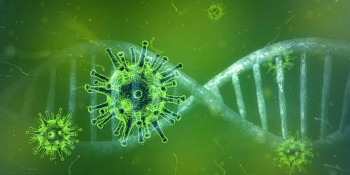 Covid, ecco come una molecola attacca il virus