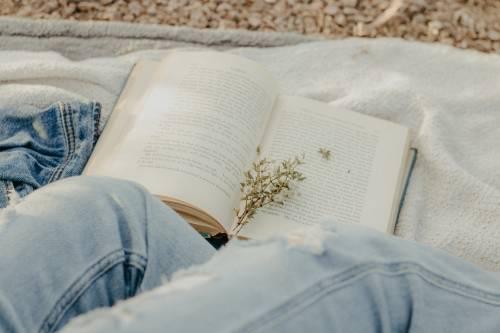 Si scrive Alice B. Toklas ma si legge Gertrude Stein