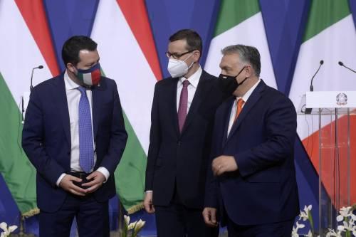 """""""Inopportuno"""", """"Voi le Sardine"""". È scontro Salvini-Pd su Orban"""