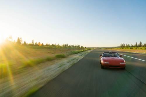 Cinetosi, i rimedi naturali per combattere il mal d'auto