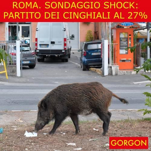 Ecco la satira del giorno. Roma: sondaggio choc