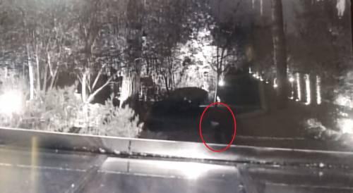 I ladri ripresi durante il furto a Paola Ferrari