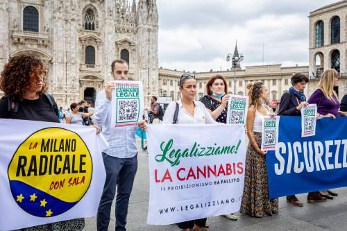 """Parte l'assalto della sinistra: """"Si vota per la droga libera"""""""