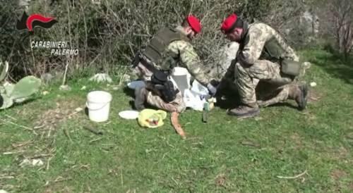 Armi e munizioni nascoste nell'azienda agricola: arrestati