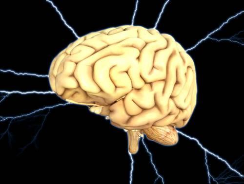 """""""Il cervello in quarantena? Cambia in tutti i sensi"""""""