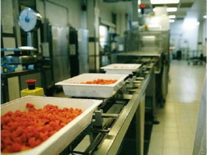 Ogni giorno nelle mense<br /> 20mila pasti speciali<br /> per prevenire le allergie
