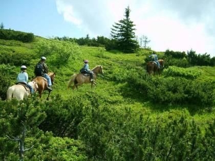 Carnia, trekking a cavallo fra monti e valli