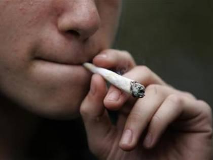 Stupefacenti, in calo il numero dei consumatori: ma cresce la cannabis