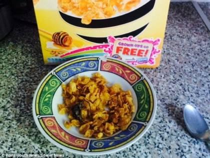 Trova un topo morto nei cereali