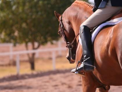 """Scandalo equitazione: """"Io, palpeggiata per quattro anni. Così ho sfidato l'omertà dei grandi"""""""