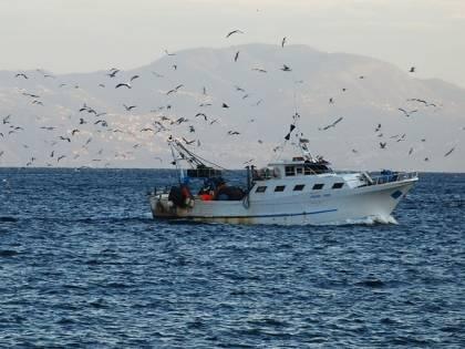 Spari su 2 pescherecci italiani I libici sequestrano le barche