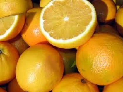 """Arance tunisine, l'allarme: 162mila chili di agrumi a rischio contagio fungo """"macchia nera"""""""