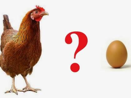 È nato prima l'uovo o la gallina? Finalmente c'è la risposta