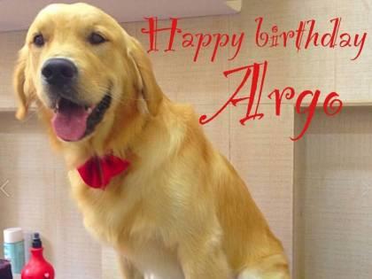 Fermato alla frontiera Argo: il cane di Girone rimane in India