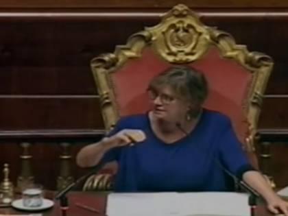 Fermo, bagarre in Senato. Bufera su Giovanardi