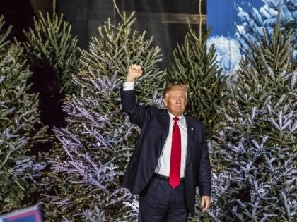 """Trump minaccia pure la Toyota: """"Produca in Usa o tasse altissime"""""""