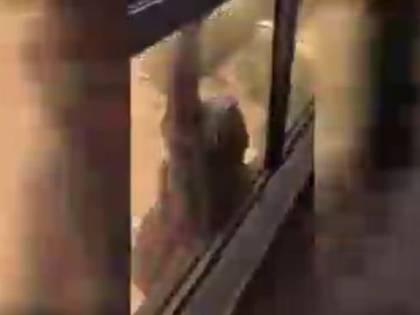 Cameriera scivola dal settimo piano e chiede aiuto: la sua datrice di lavoro continua a filmare senza afferrarla