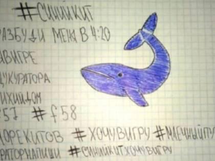 Infiltrata nella Blue whale: così ho fatto condannare l'aguzzina dei bimbi