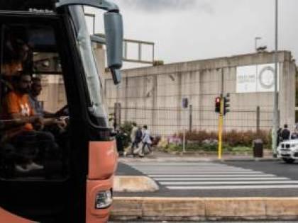 Il ritorno del bus contro l'ideologia gender
