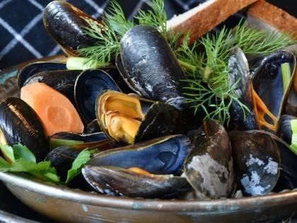 Cozze con salmonella: è allerta sanitaria in Italia