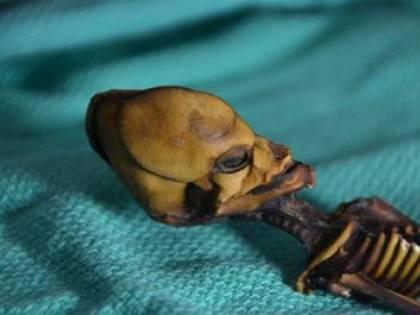 """Svelato il mistero su Ata, lo """"scheletro dell'alieno"""""""