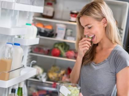 Gli avanzi di cibo nel frigorifero come il nido di batteri dannosi per la nostra salute