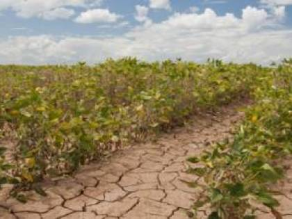 La Conferenza sul Clima ferma nel tempo. Solo un laboratorio può salvare il pianeta