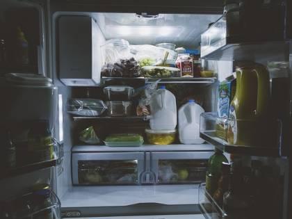 Virus sopravvive in frigo. Cosa fare per difendersi