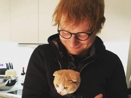 Ed Sheeran paga più tasse di Amazon