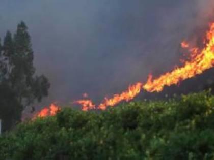 Nell'inferno di fuoco della California Vollmann si getta in un mito a rovescio