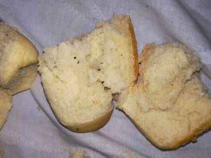Salento, distribuiti nelle mense scolastiche panini coi vermi