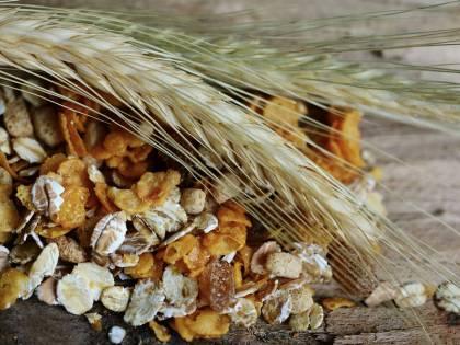 Cereali e fibre aiutano contro cancro, diabete e infarto