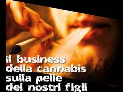 """Giovanardi al governo Conte: """"Chiudete i negozi di cannabis light"""""""